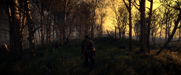 The-Witcher-3-Screenshot-2019.05.22---12.42.53.35.png